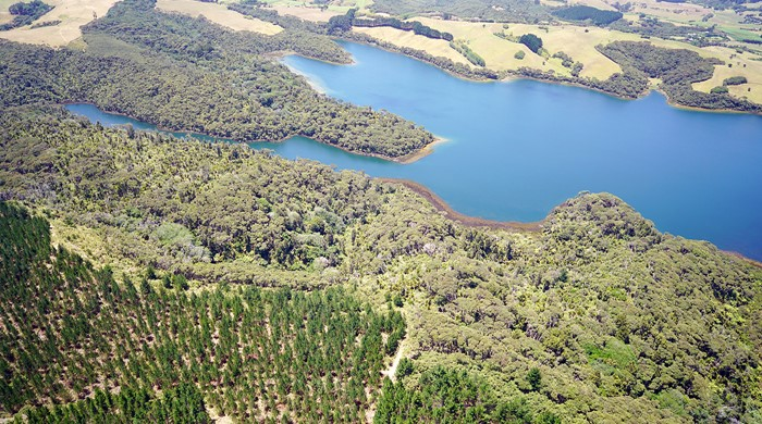 Wetlands and lakes of Lake Rototoa – Te Rau Pūriri BFA.