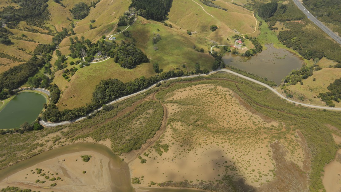 Stakes Lagoon in Waiwera, the estuary and surrounding wetland vegetation.